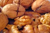 अब अखरोट उत्पादन में जम्मू-कश्मीर को मात देगा उत्तराखंड