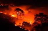 उत्तराखंड में धधक रहे हैं जंगल, बेबस है महकमा; पढ़िए पूरी खबर