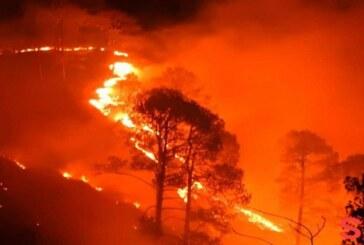 दावानल से फिर धधके नैनीताल से सटे जंगल, भीषण आग की लपटों से दहशत में लोग