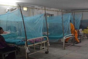 डेंगू का डंक: राजधानी में अब तक का आंकड़ा 500 पार