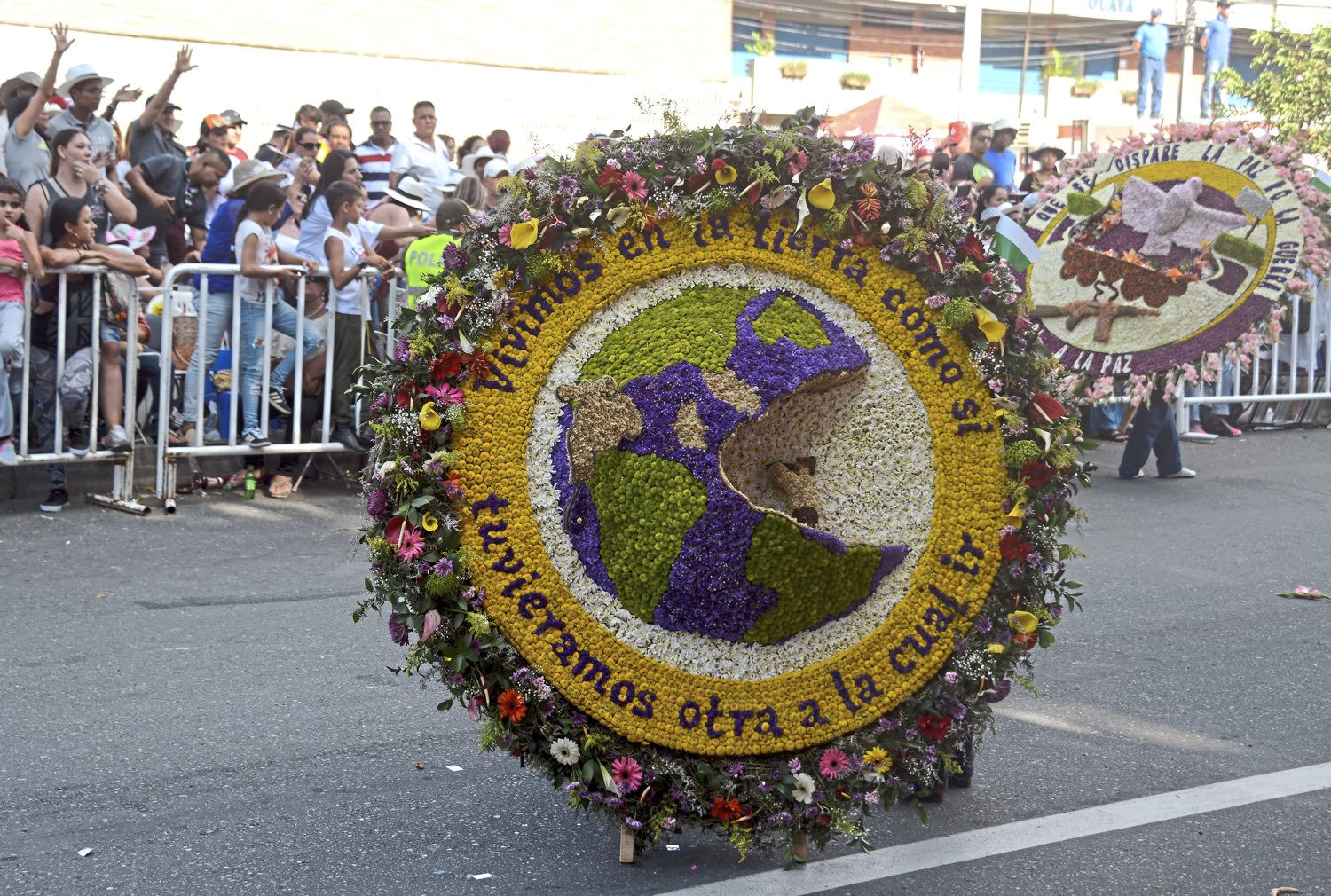 """A flower farmer carries an elaborate flower arrangement on a wooden """"silletas"""" Monday Aug. 7, 2017, during the 60th anniversary of the flower festival in Medellin, Colombia. (Nate Guidry/Post-Gazette)"""