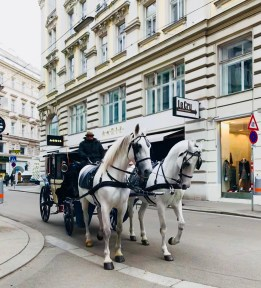 Carriage rides are available all around Vienna's central district. (Patricia Sheridan/Post-Gazette)