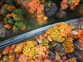 Fall colors burst forth from the hills of North Park on either side of North Ridge Drive on Thursday, Nov 9, 2017 in McCandless. (Haley Nelson/Post-Gazette)