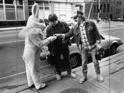 Bunny Business on Boulevard of the Allies (Andy Starnes, The Pittsburgh Press)
