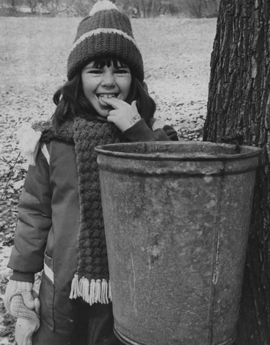 Eight year-old Kelly Johnston sneaks a taste of the maple sap during the annual Maple Surgaring Festival in 1980. (Ross Catanza/The Pittsburgh Press)