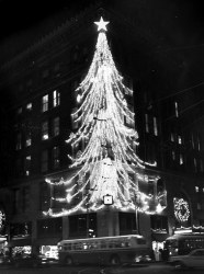 The tree as it looked around 1960. (Dale Gleason/The Pittsburgh Press)