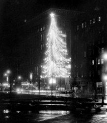 This is how the tree looked at night in 1956. (Sun-Telegraph)
