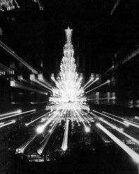 Photographer Andy Starnes used a zoom lens and slow shutter speed to create this picture of the Horne's Tree.