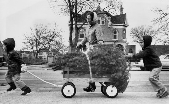 The Wilson family pull their Christmas tree on a wagon through East Liberty, Dec. 18, 1974. (Harry Coughanour/Post-Gazette)