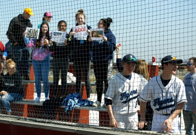 Lake High School fans celebrate head baseball coach Greg Wilker's 600th win during a home game against Wauseon on Saturday, April 6, 2019. THE BLADE/LORI KING
