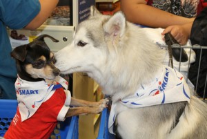 Pets and their owners will have a full day of special activities at the new Carolina PetSmart location on July 19.