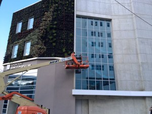 """Banco Popular is """"greening"""" its newest building in Hato Rey, which houses 11 nonprofits. (Credit: Lorelei Albanese)"""