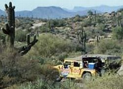 Sonoran-Desert-Night-Tour-in-a-Hummer-from-Phoenix-Arizona
