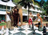 Chess playing Elephant at Club Palm Garden