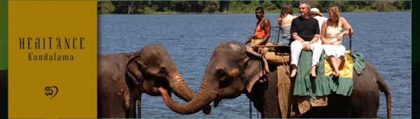 Heritance Kandalama Dambulla Sri Lanka - Activity