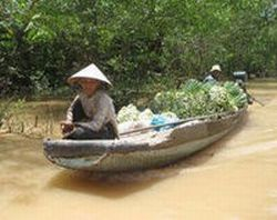 private-tour-mekong-river-cruise-tour-from-ho-chi-minh-city-in-ho-chi-minh-city-vietnam