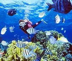 resort-diving-course-in-nassau-bahamas
