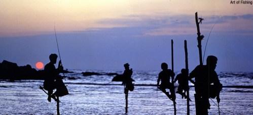 Stilt Fisherman at sunset, Kalutara, Sri Lanka