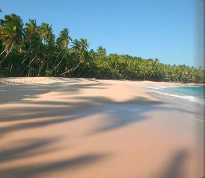 wella_beach_room18_alb