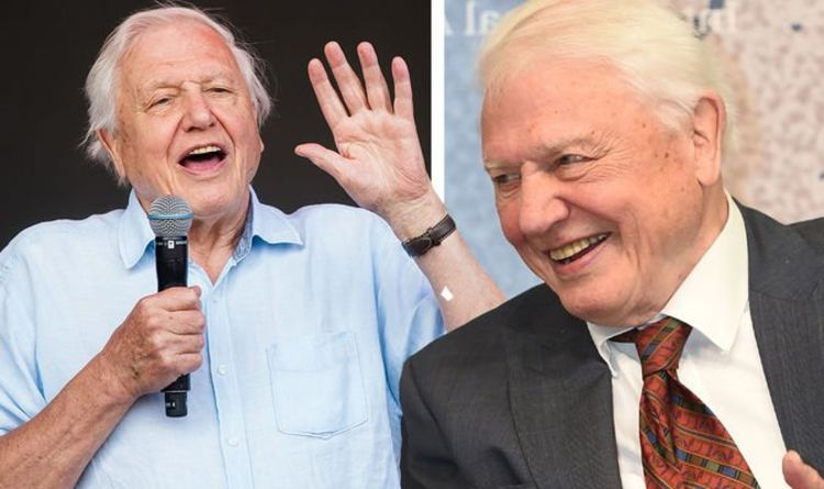 David Attenborough leaves eight-year-old super fan stunned with surprise present