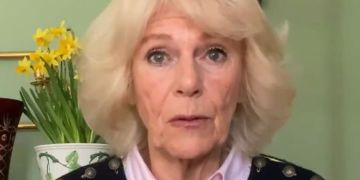Camilla 'fails to do justice' to vital domestic abuse scheme in 'unclear' video message