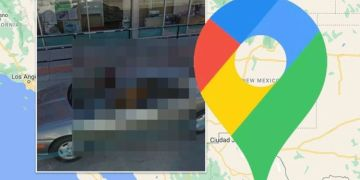 Google Maps Street View: Dog spotted in unlikely position but users commend 'good boy'