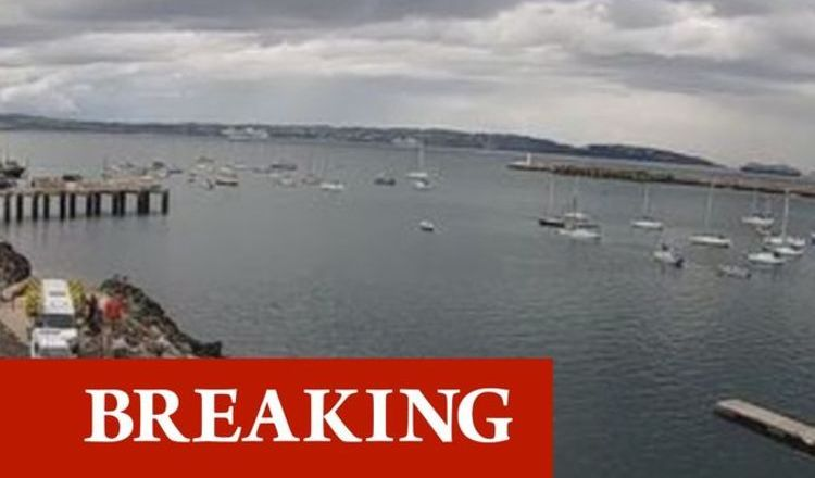 Brixham Harbour panic as bomb squad scrambled to Devon hotspot – Sea Wolf missile fears