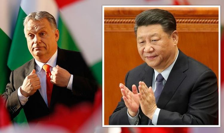 EU cracks show after China's 'friend' Hungary breaks ranks to strike deal with Beijing