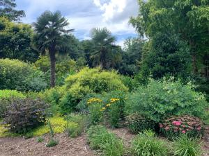 North Carolina's Juniper Level Botanic Garden opens two weekends in July – free to all