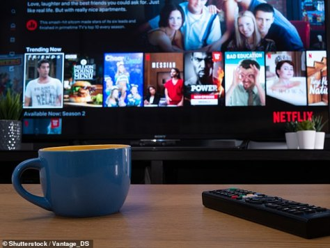 Streaming frenzy:There are many streaming services available in Australia, including but not limited to Binge, Disney+, Amazon Prime Video,Paramount+ and Netflix