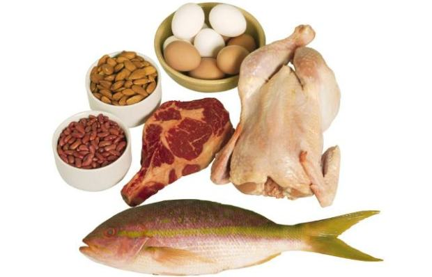 proteins for losing weight
