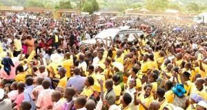 NRM Primaries