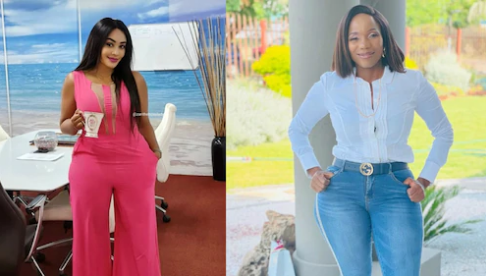 Zari Hassan Flies To Zimbabwe