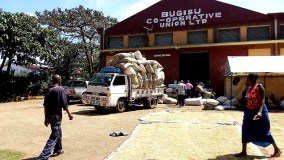 Government Embarks On Journey To Revive Cooperatives