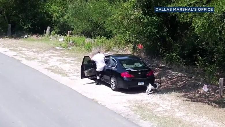 Мужчину, который высадил из авто собаку и уехал, нашли по видео и задержали