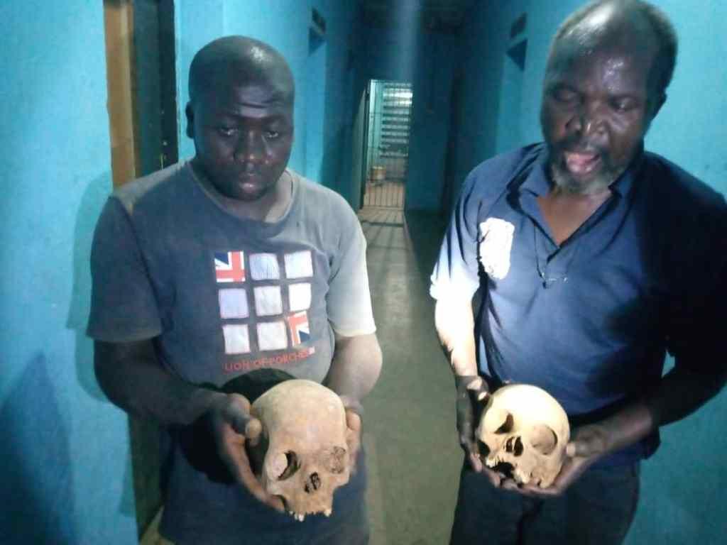 Police Nab 2 Suspected Ritualists With Human Skulls in Kaduna