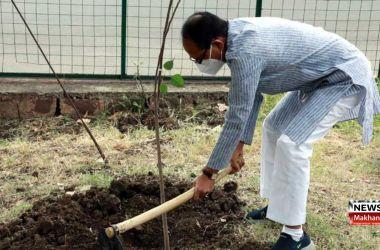 पौधा लगाएँ, फोटो अपलोड करें और मुख्यमंत्री से अवार्ड पाएँ