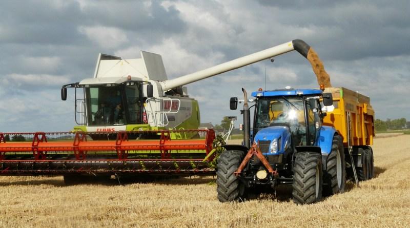 Минсельхоз уточнил прогноз урожая зерновых на 2018 год