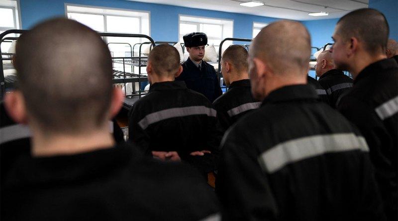 Ждать ли уголовной амнистии в 2019 году - последние новости из Госдумы на сегодняшний день