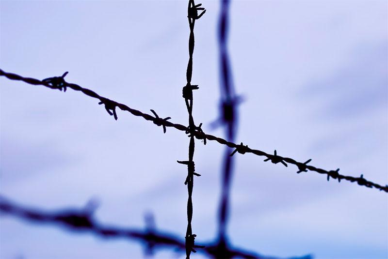 Амнистия к 75-летию Победы в 2020 году по уголовным делам - все последние новости
