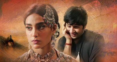 The play 'Ranjha Ranjha Kardi' also gained huge popularity