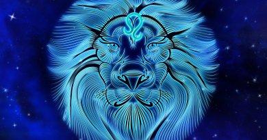 Leo Zodiac Sign Personality