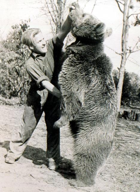 Voytek the Hero Bear