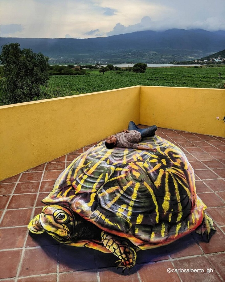 Turtle 3d painting by Carlos Alberto GH