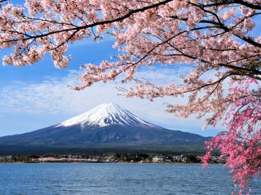 激動の時代―—「足許」の歴史を見つめる努力を / 世界最古の王朝を有する日本の誇りを忘れずに