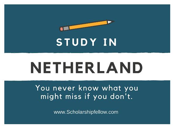 VU Holland Scholarship Programme 2020/2021 for ...