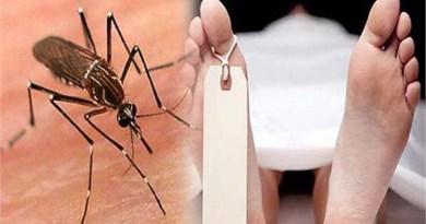 उत्तराखंड से डेंगू से चार लोगों की मौत