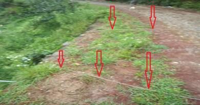 उत्तराखंड के अल्मोड़ा में पिछले 36 घंटे से रुक-रुककर हो रही बारिश और वज्रपात ने जनजीवन को बुरी तरह से प्रभावित किया है।