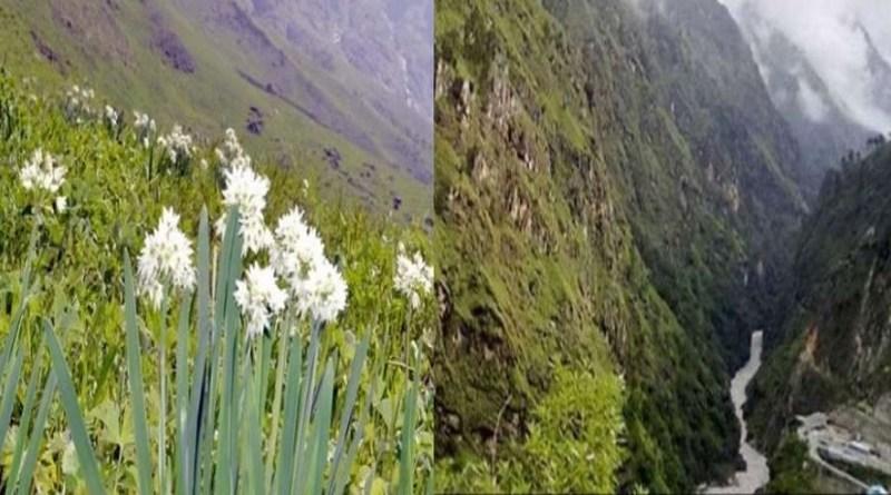 देश में अनलॉक-4 शुरू होने के साथ ही देशभर में लोगों के भ्रमण का सिलसिला भी शुरू हो गया है। चमोली में फूलों की घाटी खुलने के बाद से ही लोगों का यहां आने का सिलसिला भी जारी है।