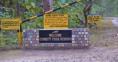 रामनगर: कॉर्बेट के वन परिसर में देर रात हुई चोरी, एक लाख रुपए के सामान पर चोरों ने किया हाथ साफ